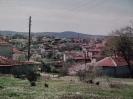 ΚΑΡΥΕΣ_3