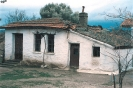 Τα Πρωτα Σπίτια της Άνθειαις